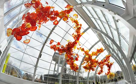 chihuly-graden-glass